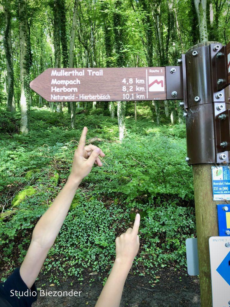 Mullerthal Trail route 1 Moersdorf