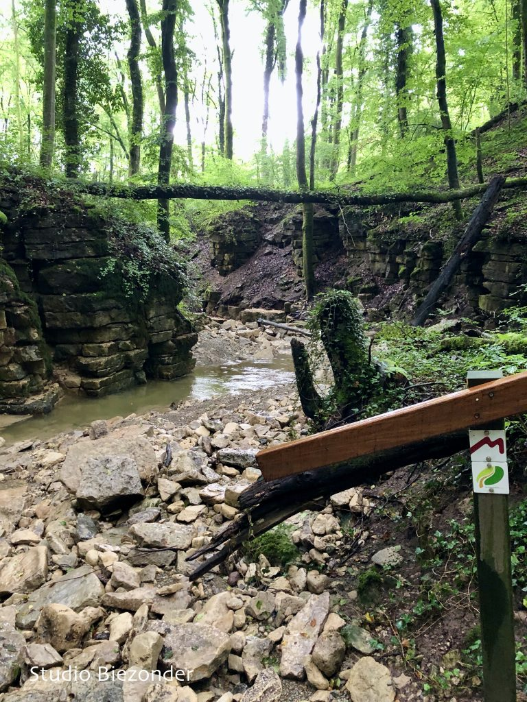Mullerthal Trail route 1