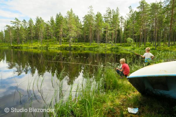 vissen Zweden